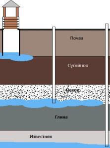 Подошвой водоносного горизонта называются горные породы, подстилающие водоносный горизонт, и, в частности, их верхняя поверхность. Обычно она бывает водоупорной.