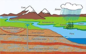 При вскрытии вод уровень их в скважинах устанавливается либо очень незначительно выше водоупорной кровли водоносного слоя, либо на границе верхнего водоупора и водоносного слоя.