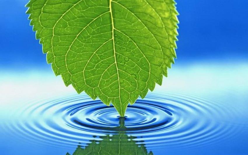 Вода из скважин и природных источников имеет ряд растворенных компонентов и взвесей.