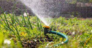 Самый распространённый вариант — полив из скважины.