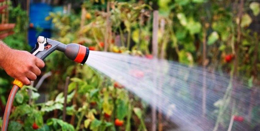 Полив водой из скважины в огороде